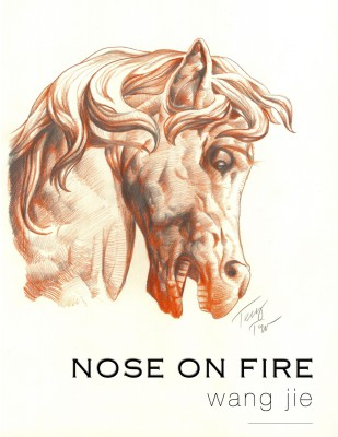 01Nose on Fire_Cover_150 dpi